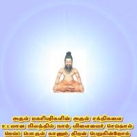 அகஸ்திய மாமகரிஷியும் துருவ நட்சத்திரமும் சப்தரிஷி மண்டலங்களும்