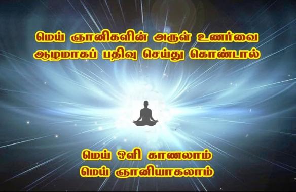 wisdom-light