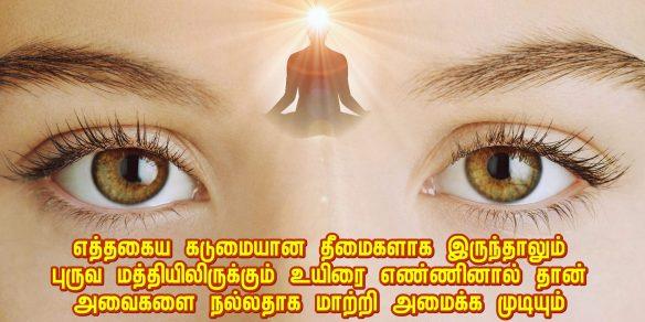 Third eye soul - bliss