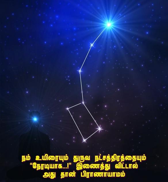 Ultimate star Polaris
