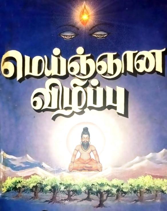 self realization - divine rishi
