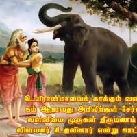 விநாயகர் வள்ளியை முருகனுக்கு மணம் முடிக்க உதவினார்... ஏன்...?